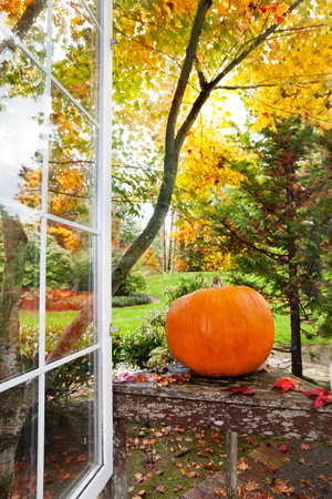 Pumpkin and fall foliage colors outside an open home window photo