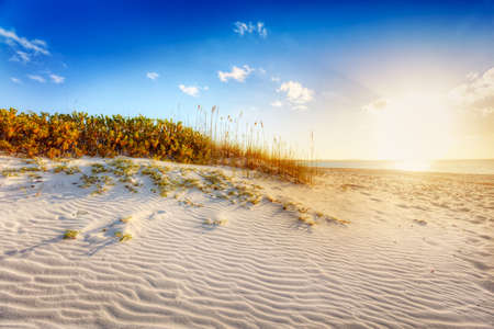 desert sun: Sun about to set over sand dunes and grasses at Grace Bay Beach, Turks & Caicos Stock Photo