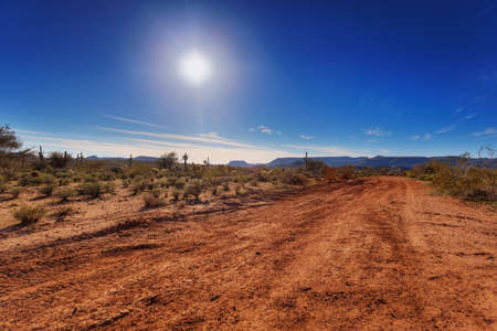 Dirt road through Arizona desert just outside Scottsdale photo