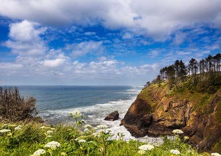 decepci�n: Ver hacia el norte sobre Long Beach de la luz de la cabeza del Norte, Cabo decepci�n State Park, Washington