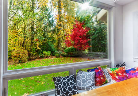 picture window: Fall color and leaves on the grass from large picture window