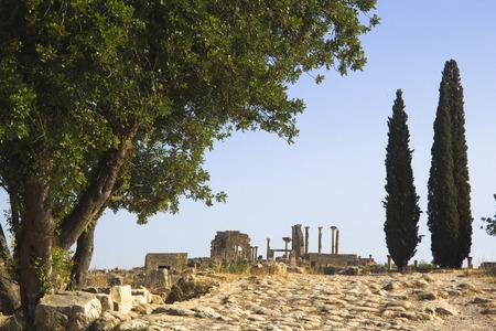 dorian: Volubilis ruins Stock Photo