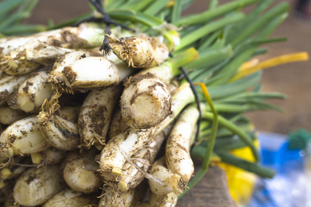 calsots: Raw calcot