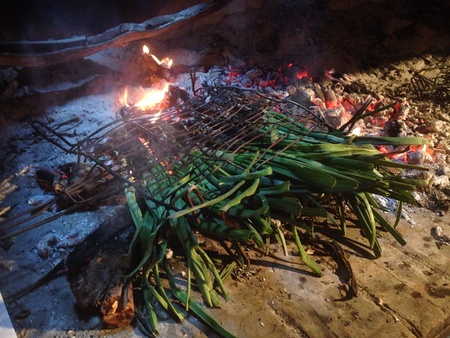 Calcots in a barbecue
