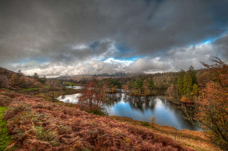 Tarn Hows near Hawkshead Lake District National Park England uk on a beautiful day.
