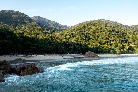 sandal tree: Beautiful relaxing beach in the state of Rio de Janeiro, Brazil. Close to Praia do Sono Stock Photo