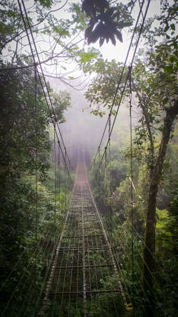Amazing suspended iron brigde in the middle of the jungle. Lonely pathway. Misty scene