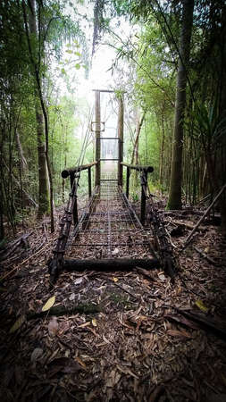 Amazing suspended iron brigde in the middle of the jungle. Wood entrance. Lonely pathway. Misty scene