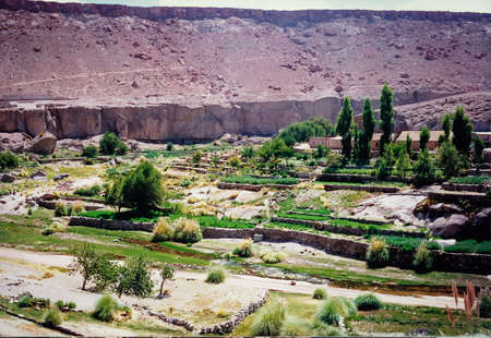 Amazing oasis in the atacama desert. Lush and green plants in the middle of the desert. Small village in the desert. Chile Imagens