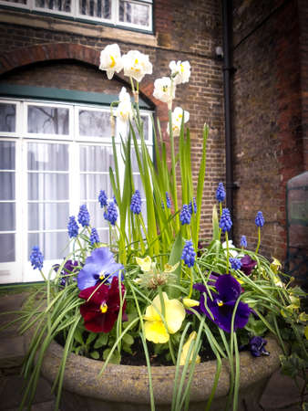 Beautiful flower vase with amazing flowers at London, UK.