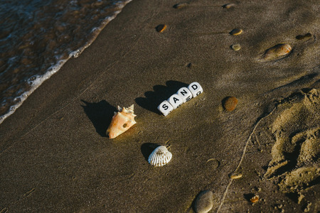 Summer concept made with dice with letters on the wet sand of a beach and marine motives. Imagens