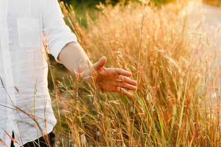 Hand and arm of man stroking plants and tall herbs