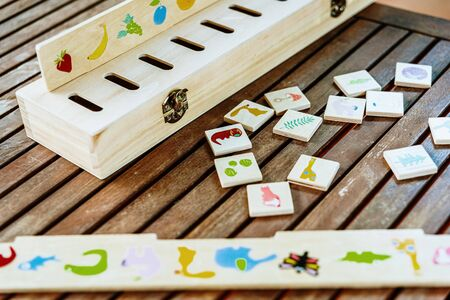 Wooden game to match drawings, used in educational alternative pedagogies, such as the montessori method.