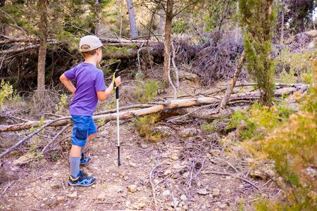 Child hiker walks trails leaning on a hiking stick living an adventure.