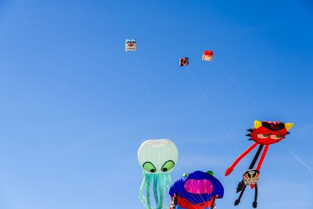Group of kites with shapes of animals flying during a summer festival on the beach of Valencia. 스톡 콘텐츠