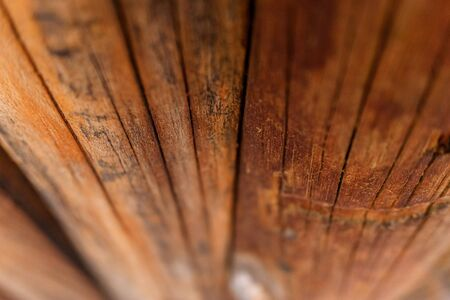 Detail of aged pine boards, to use as a natural background.