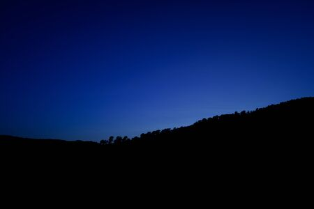 Dark background of a landscape with trees on the horizon and clear and clear sky with space for copy.