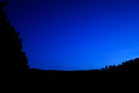 Intense blue sky at dusk with the silhouette of trees in a forest.