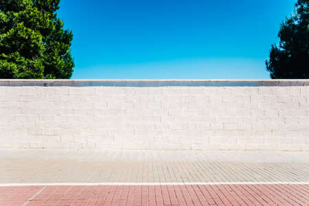 An urban minimalist scene, a white wall in the sun with two trees and blue sky.
