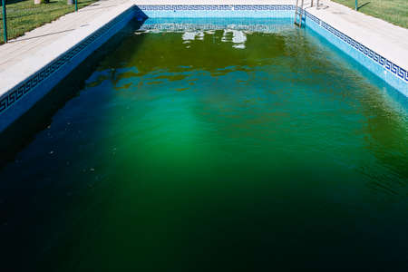 Unattended outdoor pool in winter, with green water invaded by algae.