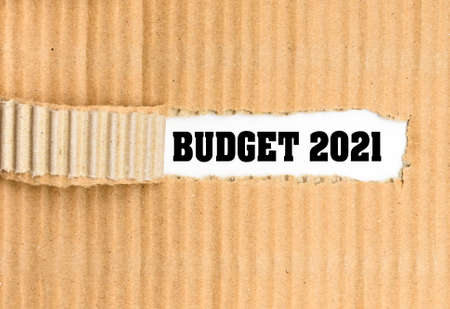 Economic budget for 2021, corrugated torn cardboard background on white paper.