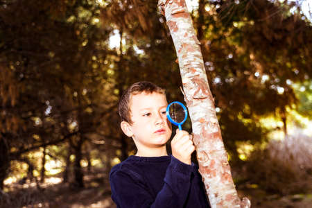 Child closely observes the trunk of a sick tree with a magnifying glass.