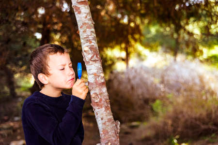 A 7-year-old student studies the bark of a tree with a magnifying glass.