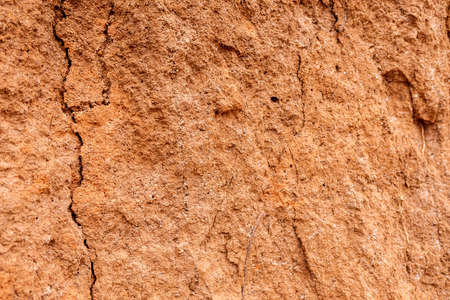 Detail and texture of the earth of a slope with cracks. Banque d'images