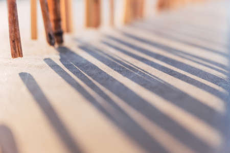 Natural background with backlit sticks that cast shadow lines on the ground blurred. Banque d'images
