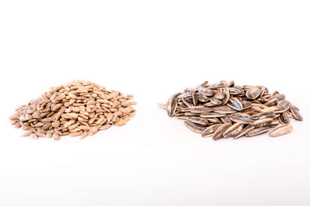 Piles of sunflower seeds isolated in studio.