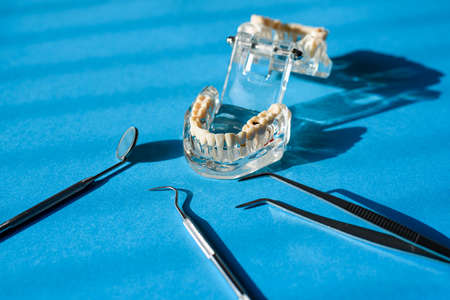 Mirror and other tools of a dentist next to a plastic model of a denture. Imagens