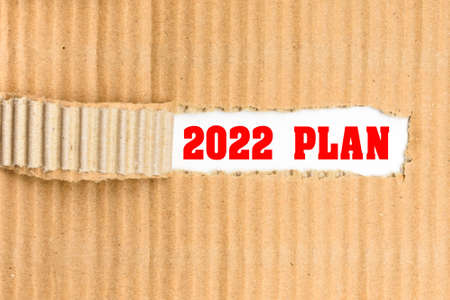 The 2022 plan discovered, a word written on its cover torn from a courier cardboard.