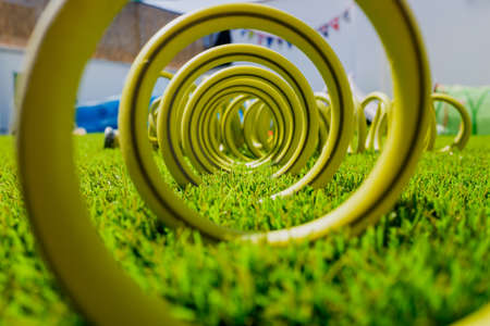 Coiled hose for watering the lawn of a garden.
