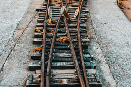 Old train track with rails branching off in two different directions.