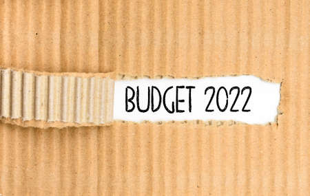 A document folder with the Budget for 2022 written on its torn cover. 免版税图像