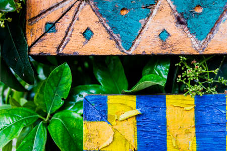 Decorative wooden frames painted in bold colors on a tropical tourist tree. 免版税图像