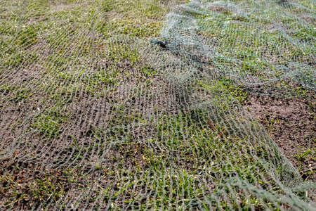Repair work on a compost grass land. 免版税图像