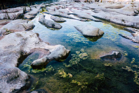 Algae grow on the bedrock of a dry river producing eutrophication 免版税图像
