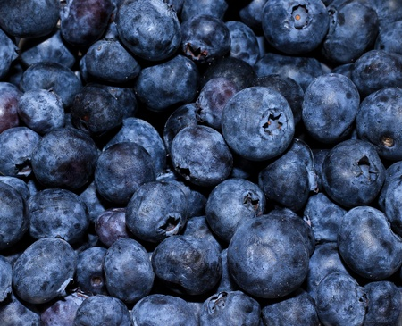 Sea of blueberry; the best dessert ever. Stock Photo