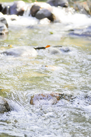 effusion: water and rock at the waterfall in blur background