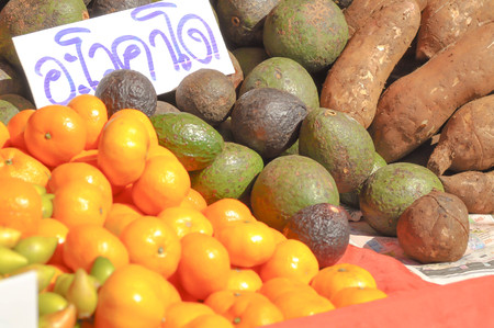 yacon: avocado , orange and yacon fruit for sell