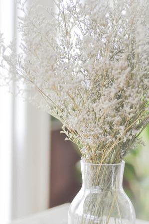 leaf cutter: purple caspia flowers in vase or caspia flower Stock Photo