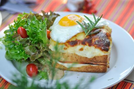toast or cheese and egg sandwich with salad 版權商用圖片