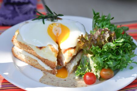 toast or cheese and egg sandwich with salad