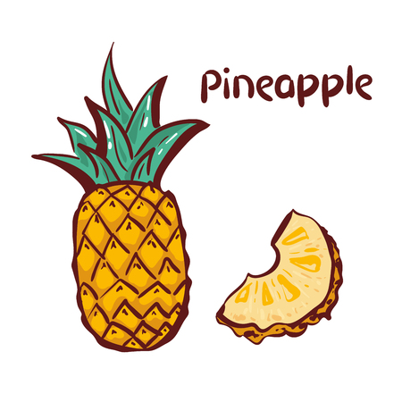 Pineapple icon. Tropical fruit, isolated on white background. Symbol of fresh food, sweet, exotic,summer, vitamin, healthy. Nature logo. hand drawing Design element Vector illustration. logo Ilustração