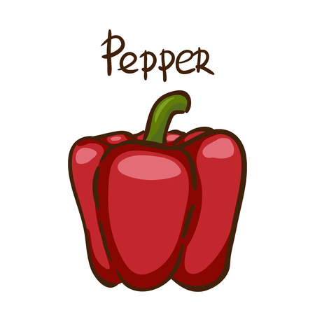 Bell pepper. Vector illustration. Red pepper on white background.Healthy vegetarian food. Ingredient for salad.Decoration for patches, signboards, showcases, menus. Isolated on white background