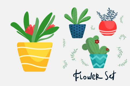 Set of colorful bright flat flower pots for house. Vector illustration isolated. Collection of modern flower pots
