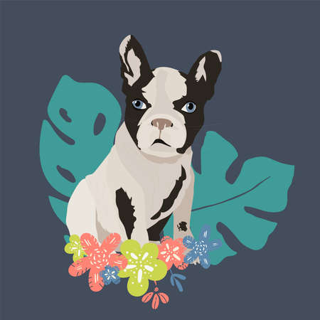 Dog French Bulldog vector flat illustration on blue with flowers. hand drawing