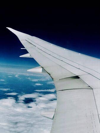 flight wing