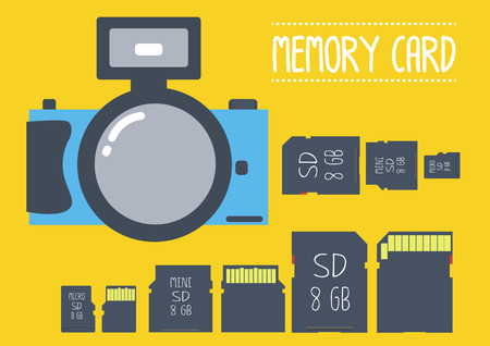 gigabyte: Type of memory card with camera in flat design